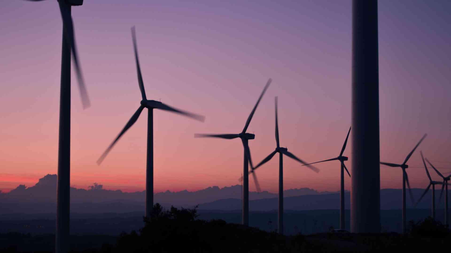 Wind farm with sunset in background